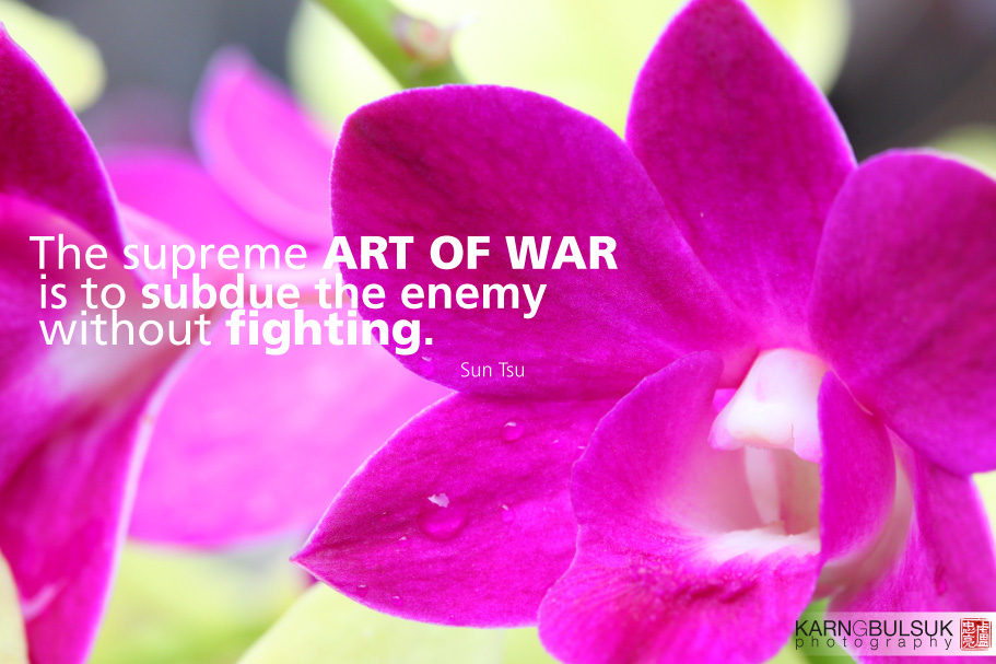 The Supreme Art Of War Is To Subdue The Enemy Without Fighting