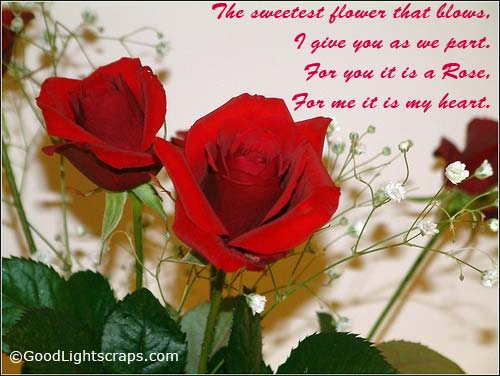 The Sweetest Flower That Blows, I Give You As We Part. For You It Is A Rose, For Me It Is My Heart