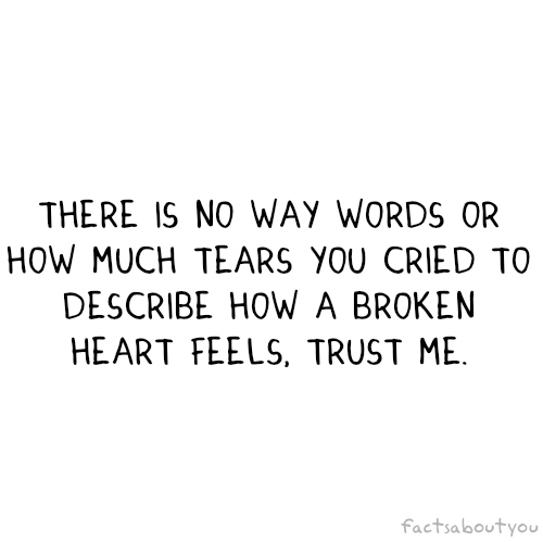 There Is No Way Words Or How Much Tears You Cried To Describe How A Broken Heart Feels, Trust Me