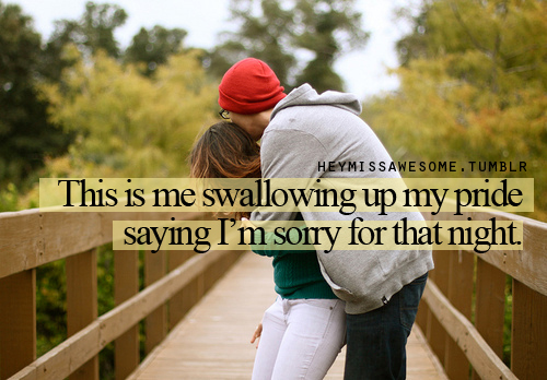 This Is Me Swallowing Up My Pride Saying I'm Sorry For That Night ~ Apology Quote