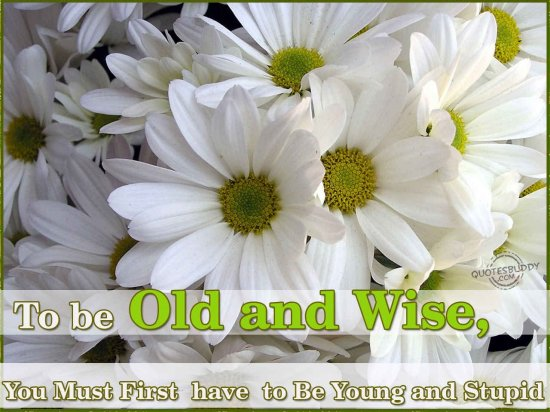 To Be Old And Wise, You Must First Have To Be Young And Stupid