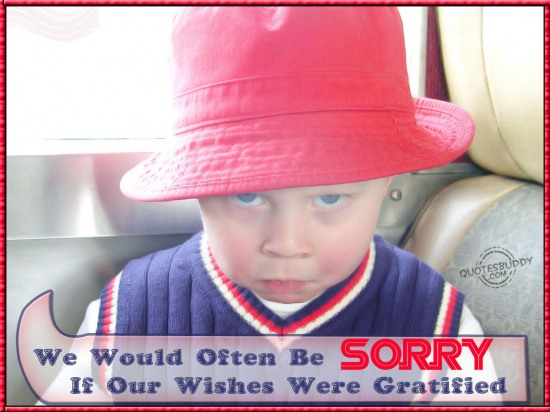 We Would Often Be Sorry If Our Wishes Were Gratified