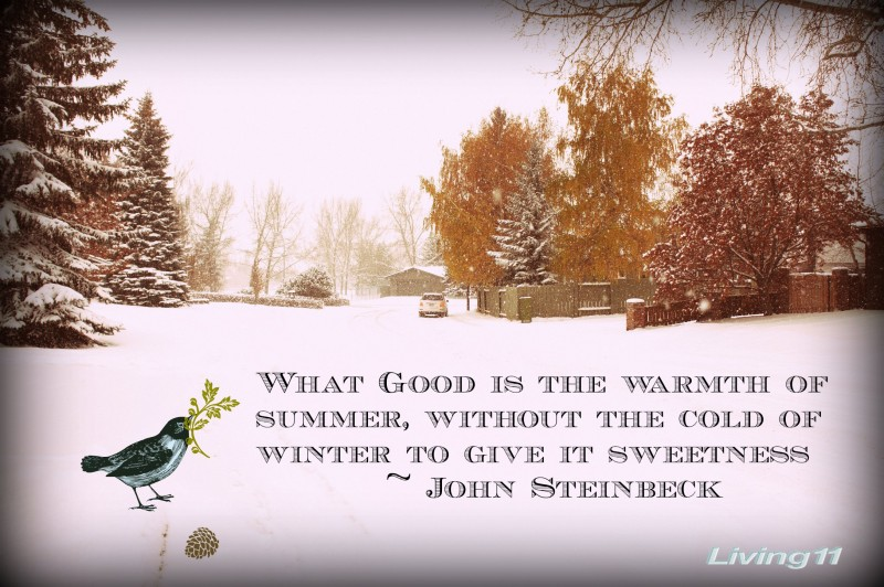 What Good Is The Warmth Or Summer, Without The Cold Of Winter To Give It Sweetness