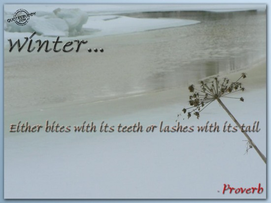Winter Either Bites With Its Teeth Or Lashes With Its Tail