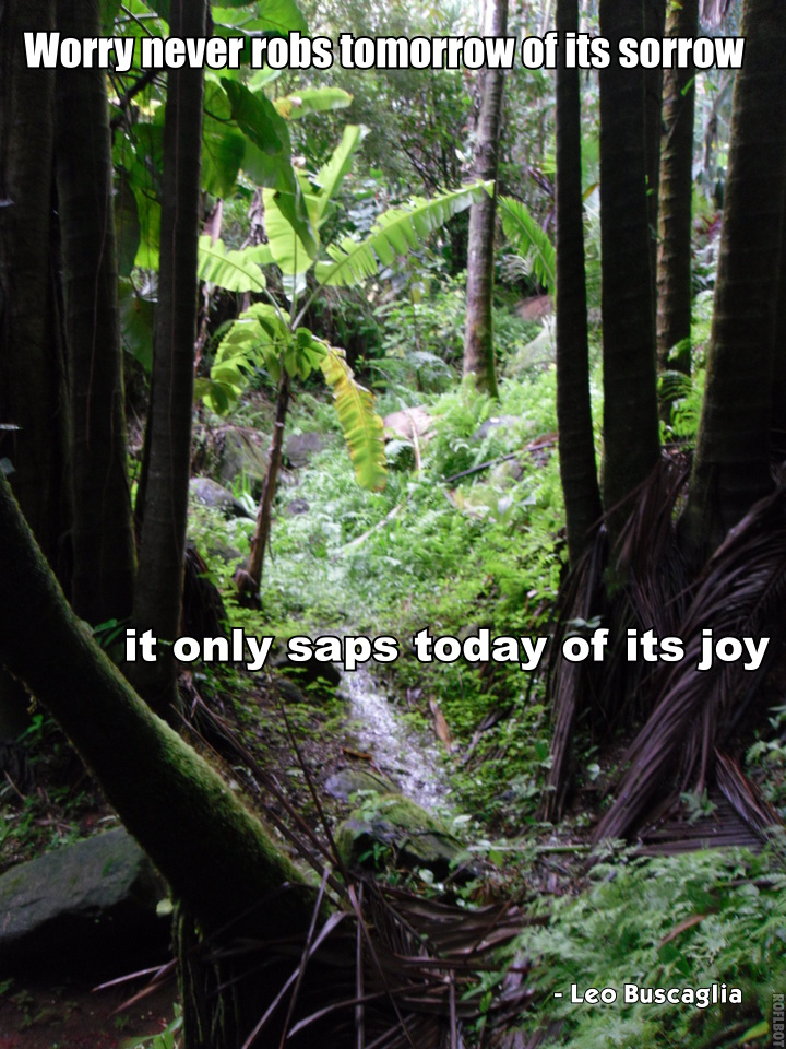 Worry Never Robs Tomorrow Of Its Sorrow, It Only Saps Today Of Its Joy