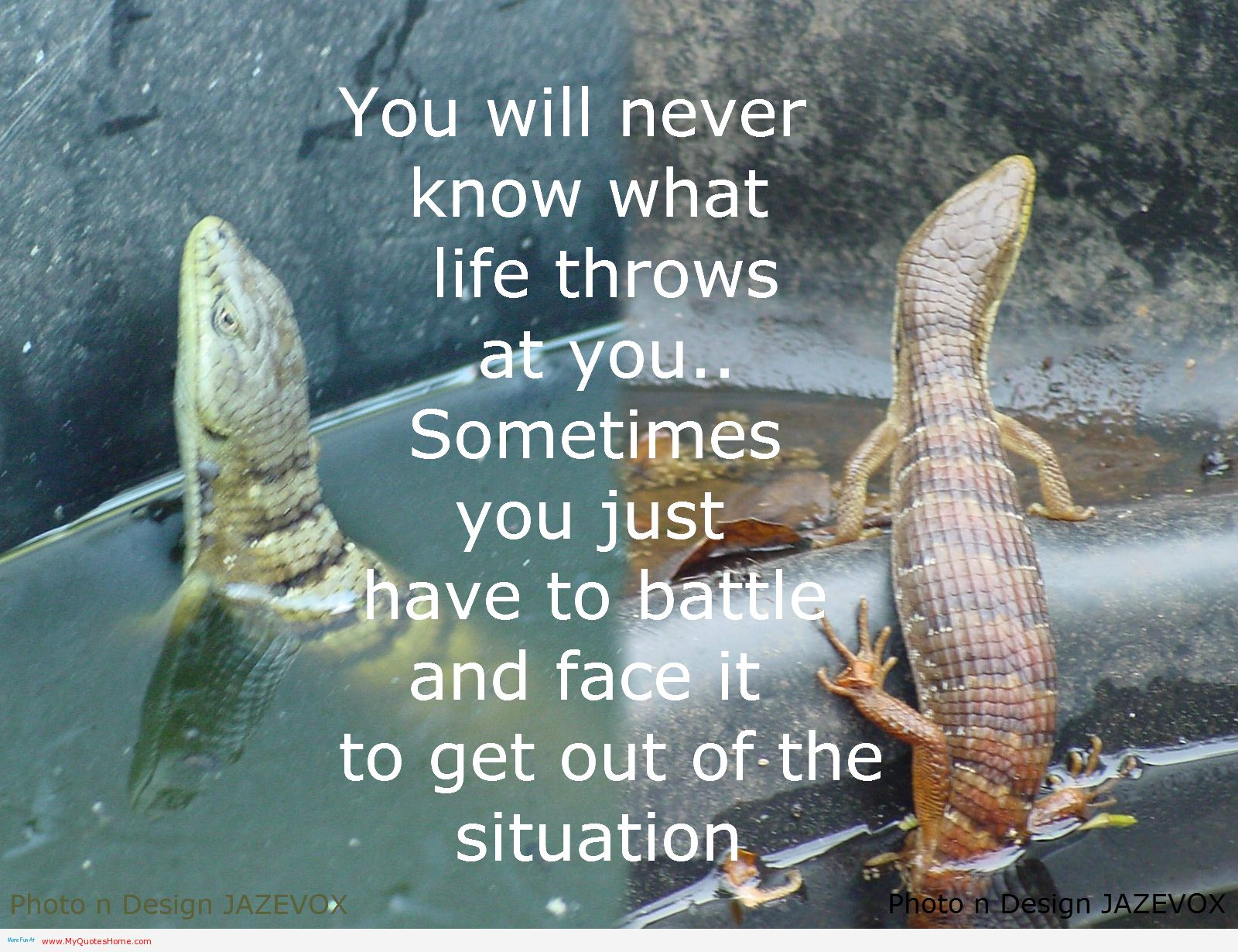You Will Never Know What Life Throws At You. Sometimes You Just Have To Battle And Face It To Get Out Of The Situation