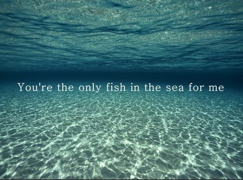 You re the only fish in the sea for me for Places to buy fish near me