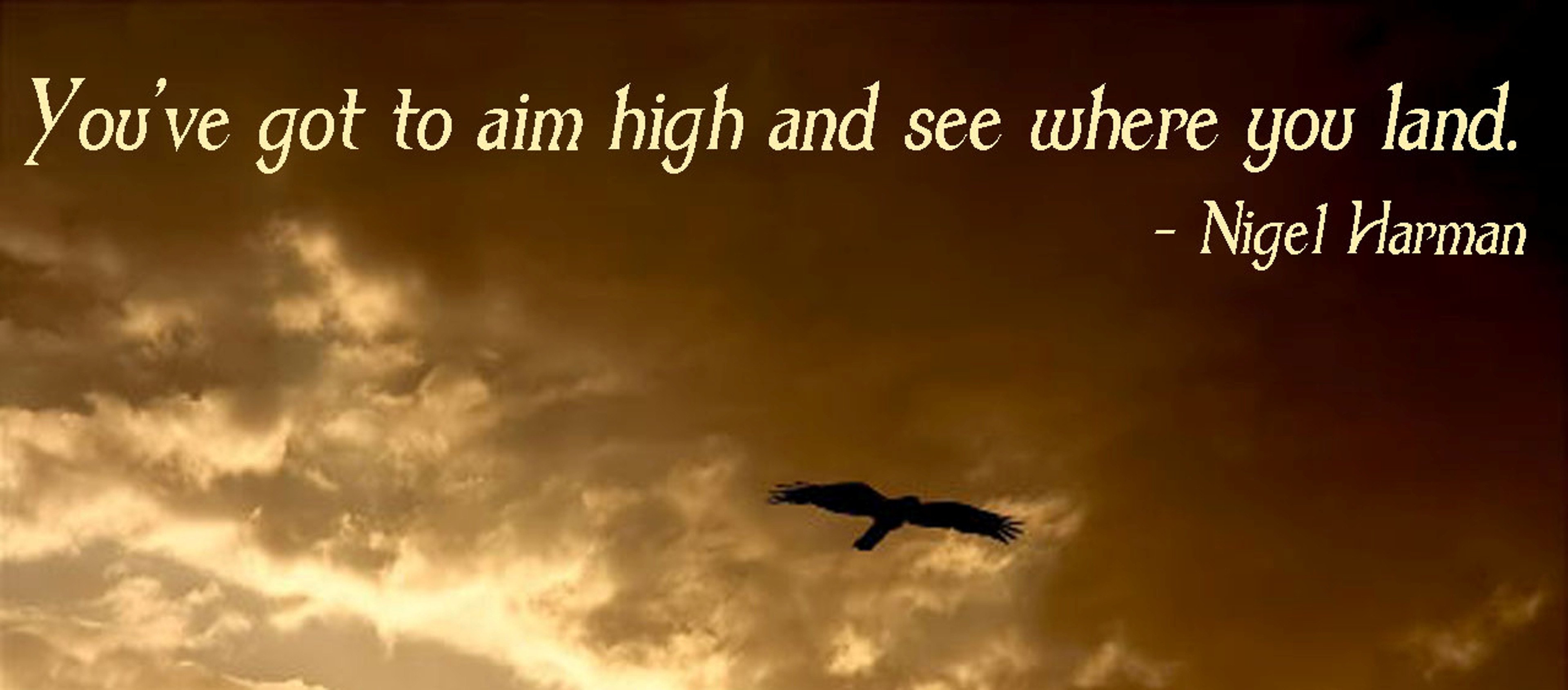 You've Got To Aim And See Where You Land