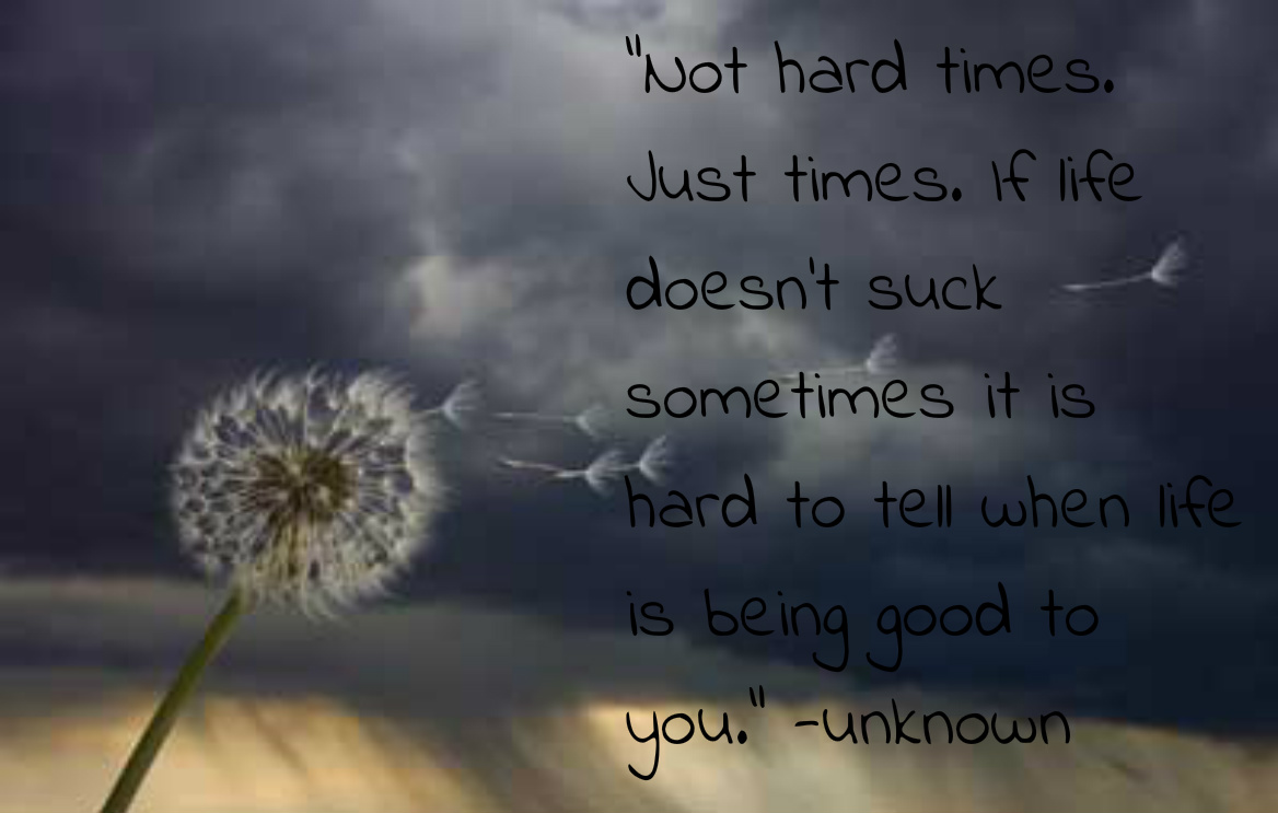 Hard Times In Life Quotes. QuotesGram