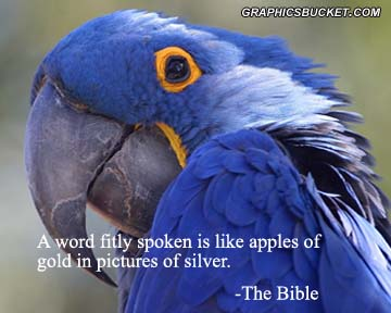 A Word Fitly Spoken Is Like Apples Of Gold In Pictures Of Silver. - The Bible