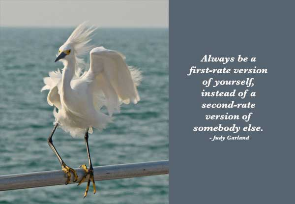 Always Be A First Rate Version Of Yourself, Instead Of A Second Rate Version Of Somebody Else. - Judy Garland