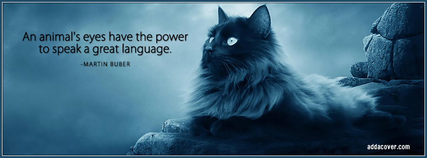 An Animal's Eyes Have The Power To Speak A Great Language - Martin Buber