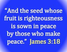 """"""" And The Seed Whose Fruit Is Righteousness Is Sown In Peace By Those Who Make Peace """" ~ Bible Quotes"""