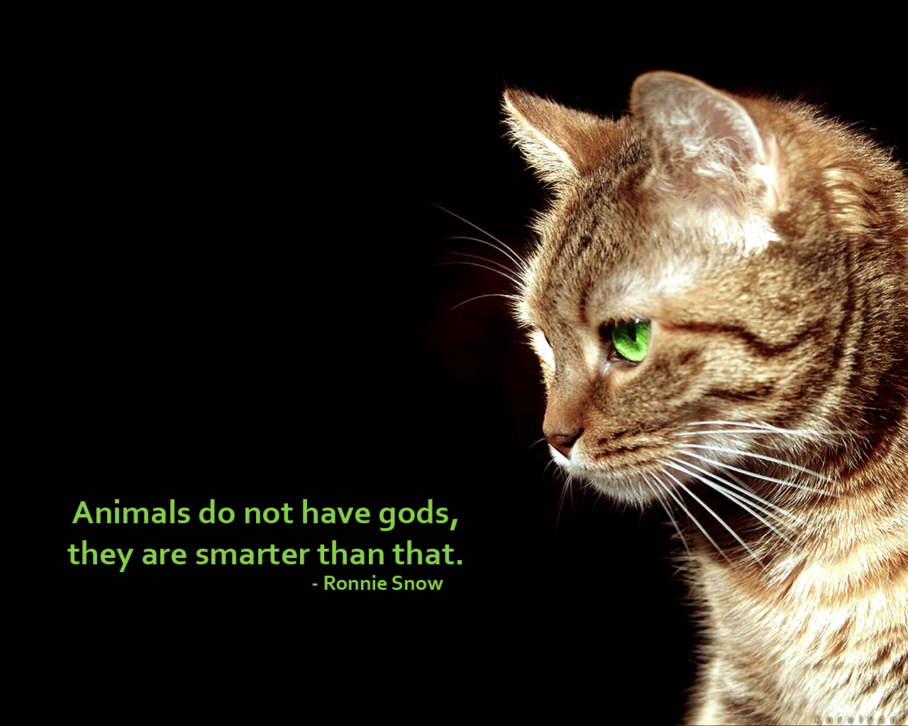 Animals Do Not Have Gods, They Are Smarter Than That. - Ronnie Snow