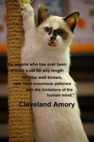 Beautiful Animal Quote