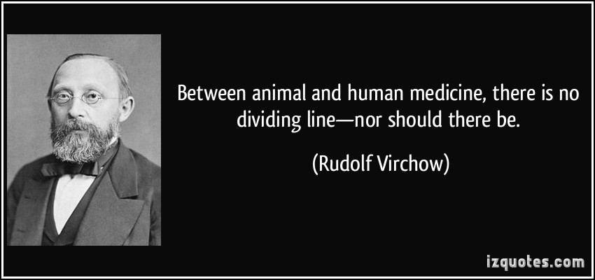 Between Animal And Human Medicine, There Is No Dividing Line - Nor Should There Be - Rudolf Virchow