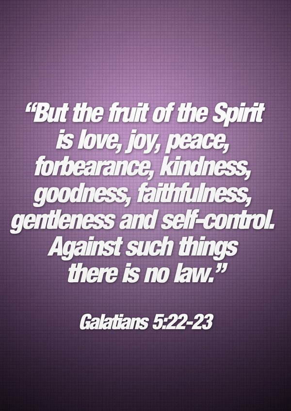 """ But The Fruit Of The Spirit If Love, Joy, Peace, Forbearance, Kindness, Goodness, Faithfulness, Gentleness And Self-Control. Against Such Things There Is No Law "" ~ Bible Quotes"