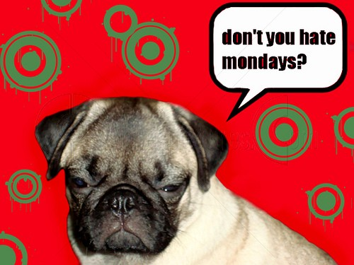 Don't You Hate Mondays! Animal Quote