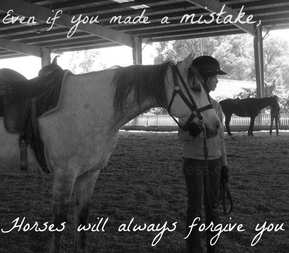 Even If You Make A Mistake, Horses Will Always Forgive You