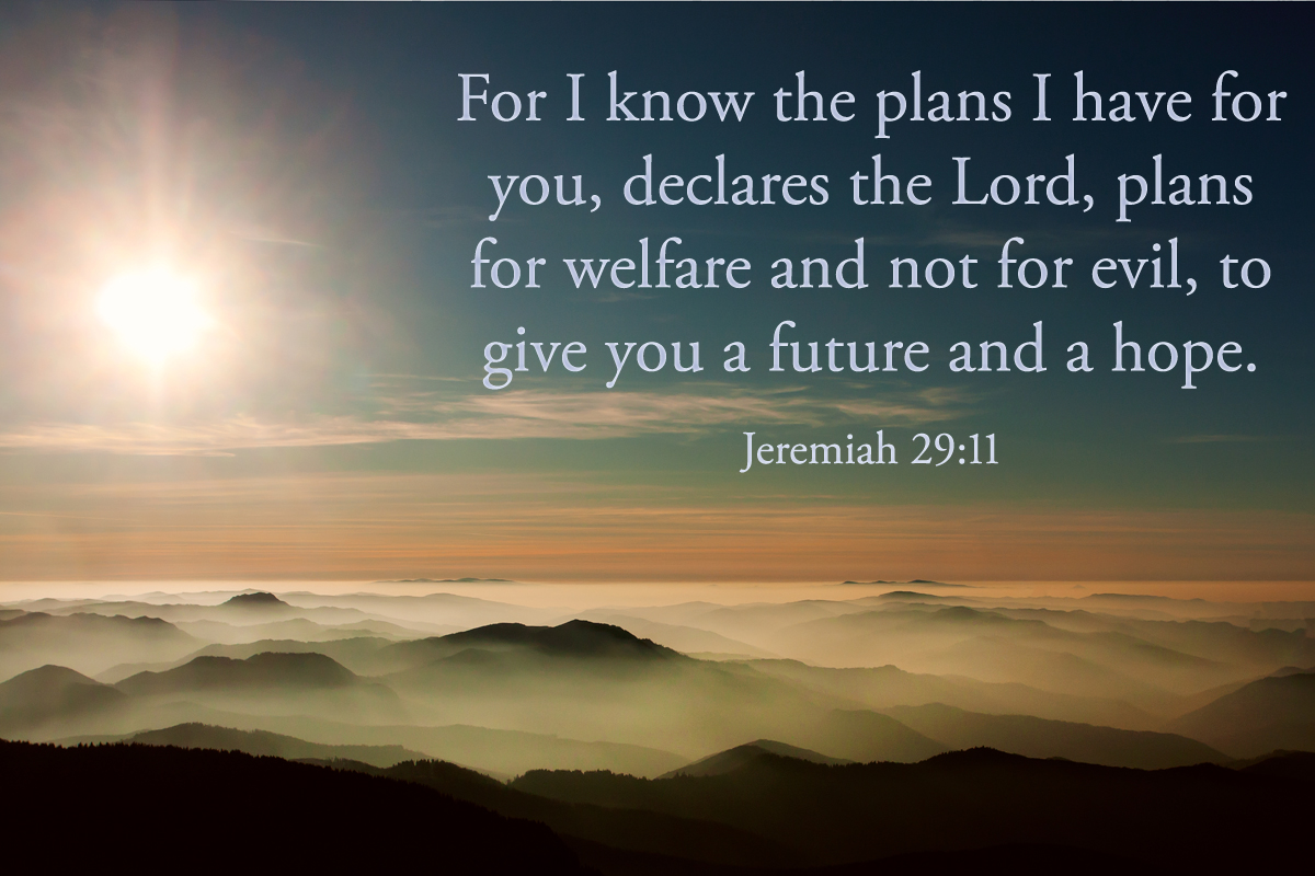 for i the plans i for you declares the lord
