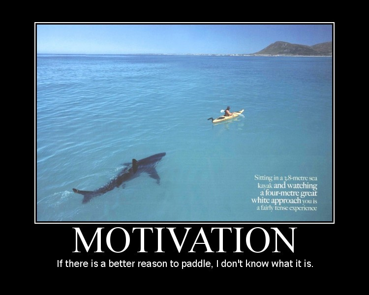 Motivational Funny Quote Quotespictures Com