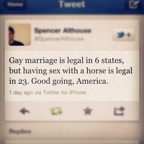 Gay Marriage Is Legal In 6 States, But Having Sex With A Horse Is Legal In 23. Good Going, America