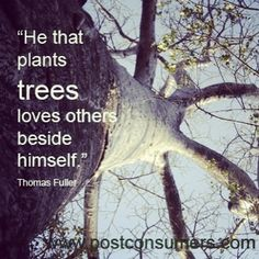 """ He That Plants Trees Loves Others Beside Himself "" - Thomas Fuller"