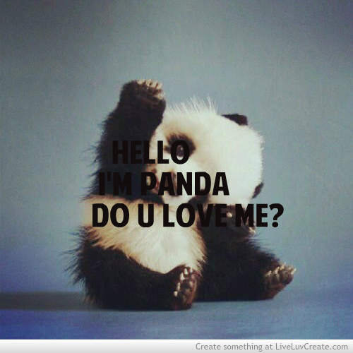 Hello I'M Panda Do U Love Me!