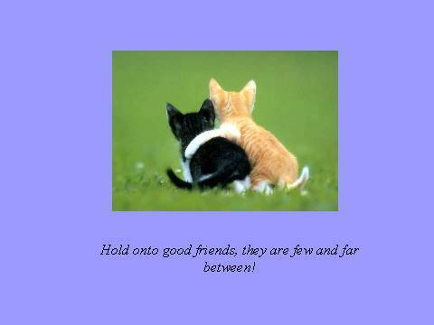 Hold Onto Good Friends, They Are Few And Far Between!