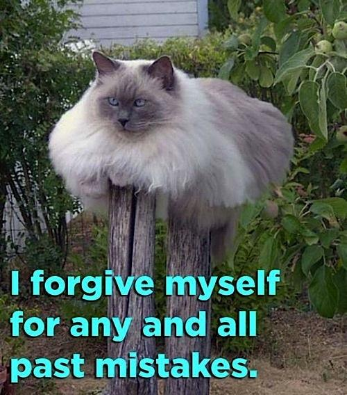 I Forgive Myself For Any And All Past Mistakes