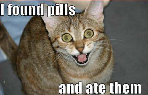 I Found Pills And Ate Them