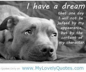 I Have A Dream That One Day I Will Not Be Judged By My Appearance, But By The Content Of My Character