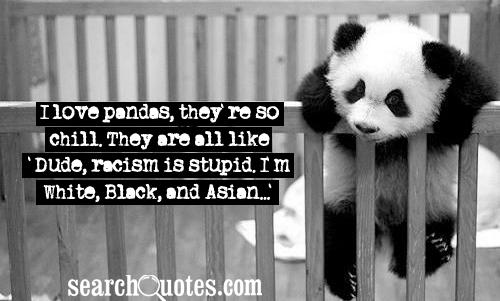 I Love Pandas, They're So Chill. They Are All Like Dude, Racism Is Stupid I'm White, Black And Asian