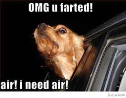 I Need Air! Funny Animal Quote