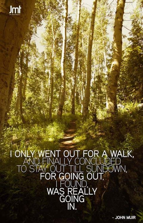 I Only When Out For A Walk, And Finally Concluded To Stay Out Till Sundown. For Going  Out, I Found. Was Really Going In. John Muir