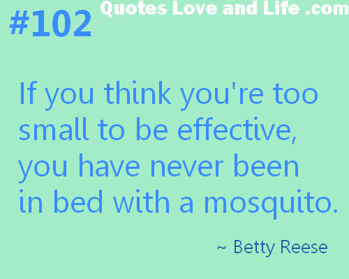 If You Think You're Too Small To Be Effective, You Have Never Been In Bed With a Mosquito