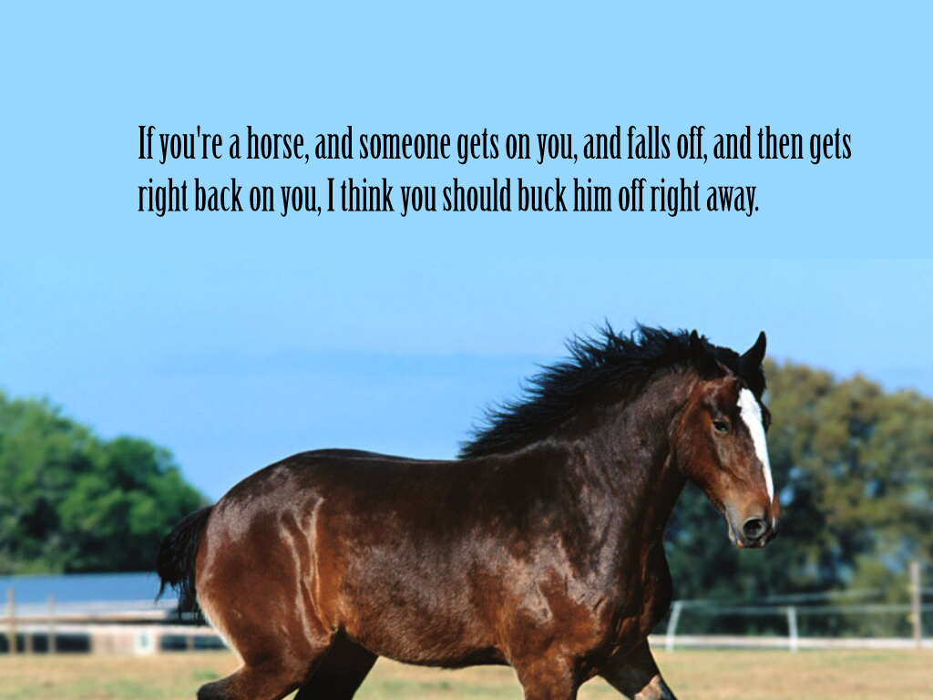 If You're A Horse, And Someone Gets On You, And Falls Off, And Then Gets Right Back On You, I Think You Should Buck Him Off Right Away