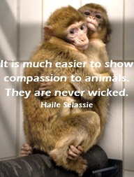 It Is Much Easier To Show Compassion To Animals. They Are Never Wicked - Haile Selassie