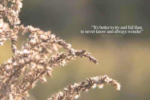 """It's Better To Try And Fail Than To Never Know And Always Wonder"""