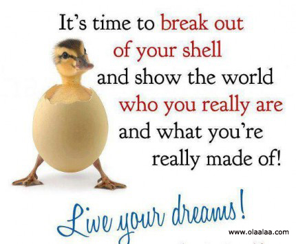 It's Time To Break Out Of Your Shell And Show The World Who You Really Are And What You're Really Made Of! Live Your Dreams!
