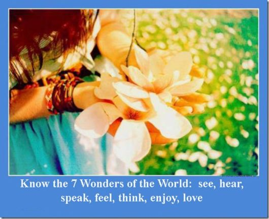 Know The 7 Wonders of The World; See, Hear, Speak, Feel, Think, Enjoy, Love