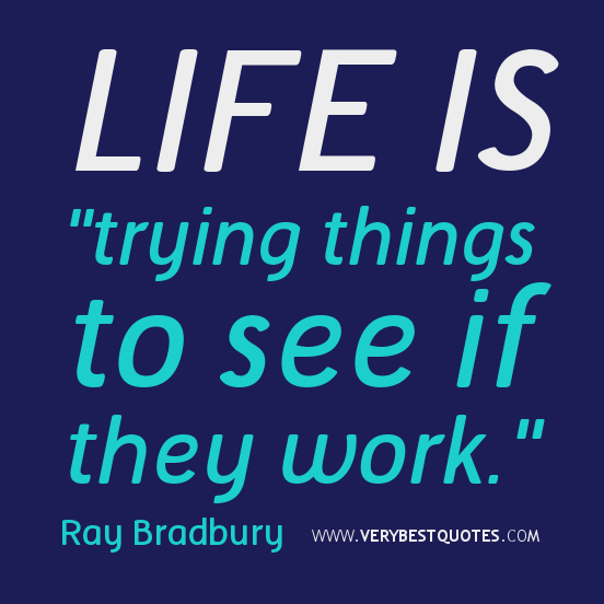 """Life Is """"Trying Things To See If They Work"""""""