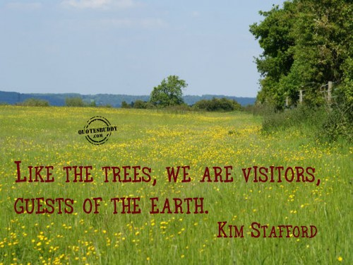 Like The Trees, We Are Visitors, Guests Of The Earth. - Kim Stafford