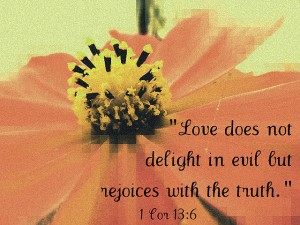 """"""" Love Does Not Delight In Evil But Rejoices With The Truth """" ~ Bible Quotes"""