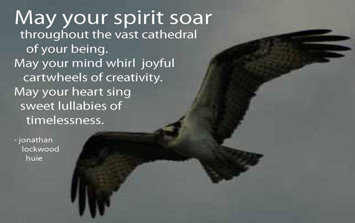 May Your Spirits Soar Throughout The Vast Cathedral Of Your Being