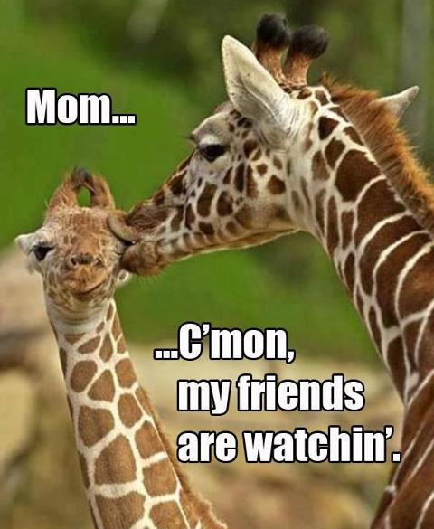 Mom…C'mon, My Friends Are Watchin'
