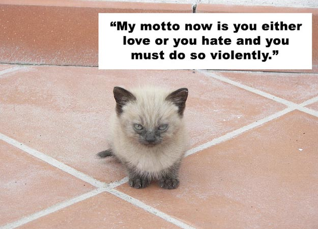 """My Motto Now Is You Either Love Or You Hate And You Must Do So Violently"""