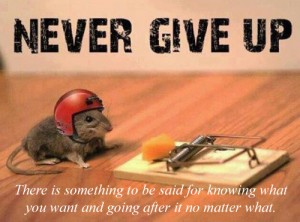 Never Give Up, There Is Something To Be Said For Knowing What You Want And Going After It No Matter What