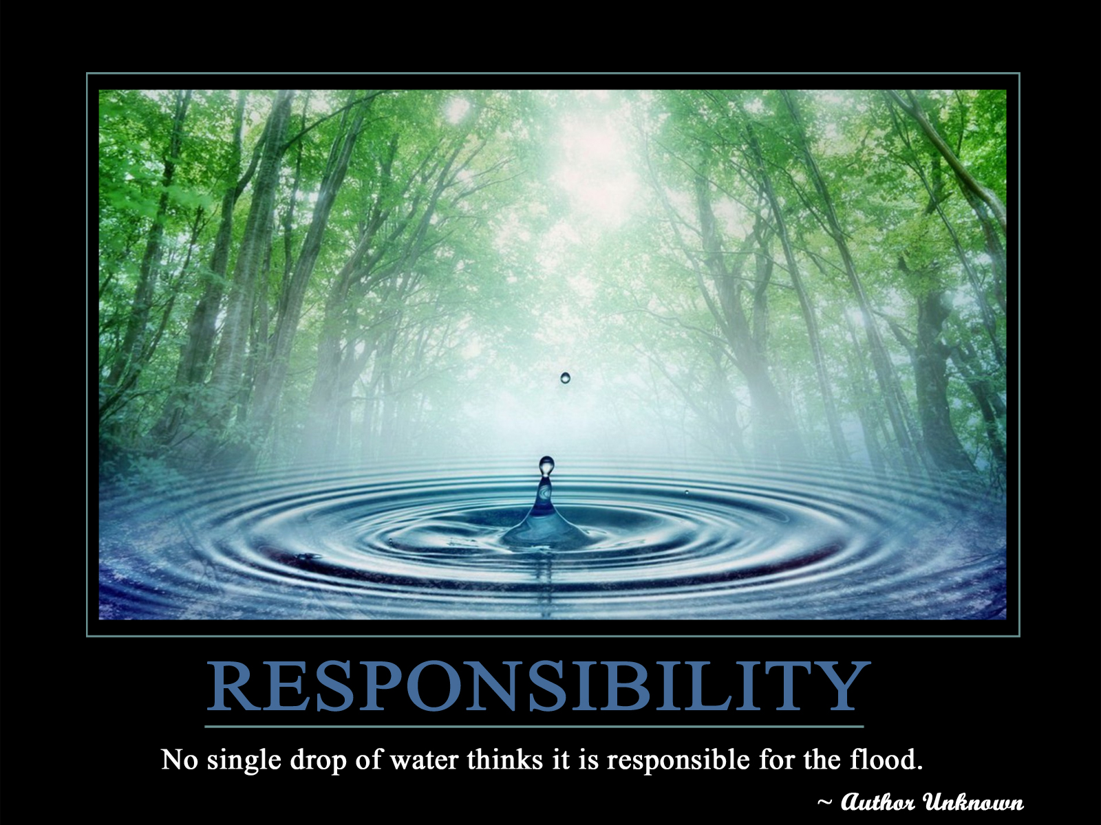 No Single Drop Of Water Thinks It Is Responsible For The Flood