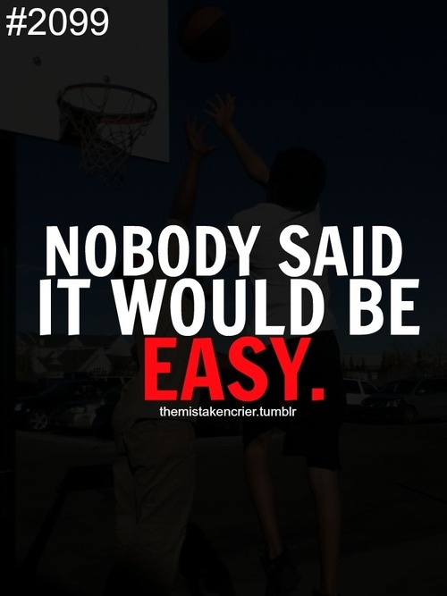 Nobody Said It Would Be Easy.
